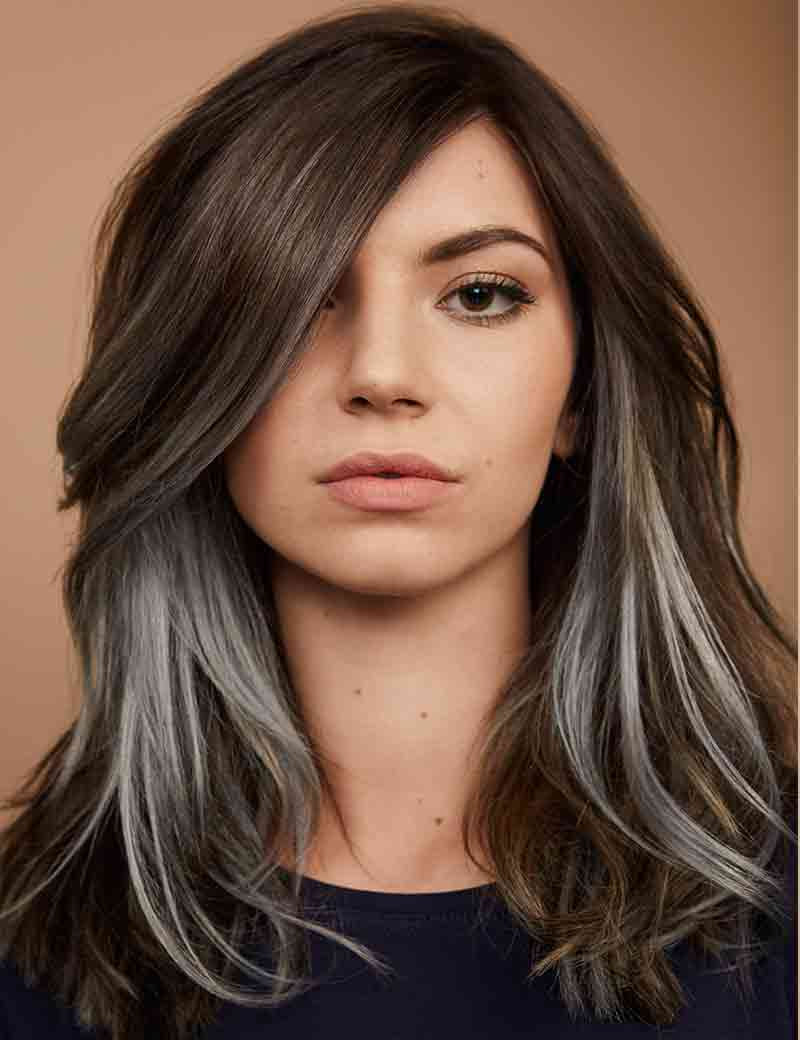 Redken Beyond Brunette Chrome
